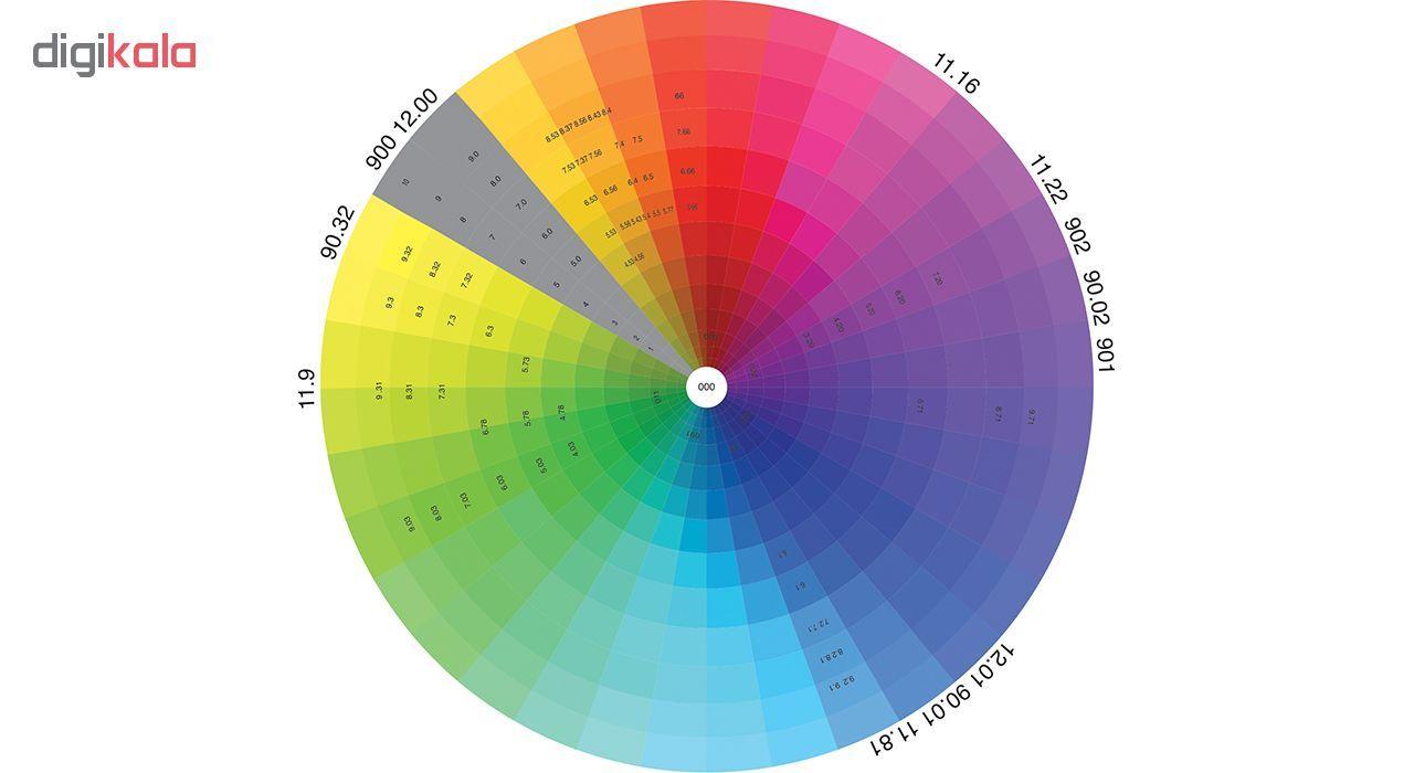 رنگ مو اسکالیم شماره 9.1 حجم 100 میلی لیتر رنگ بلوند دودی خیلی روشن main 1 1