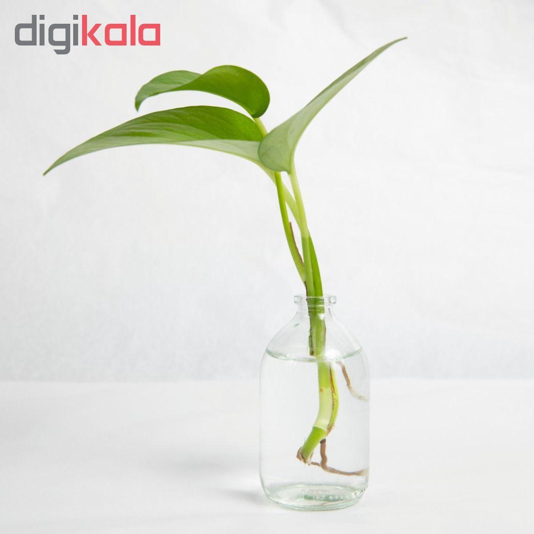 گلدان مدل ویال 1G1-2 main 1 1