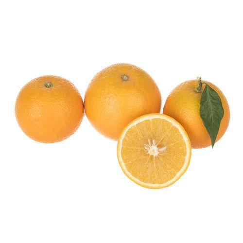 پرتقال واشنگتن ناول مقدار 1000 گرم