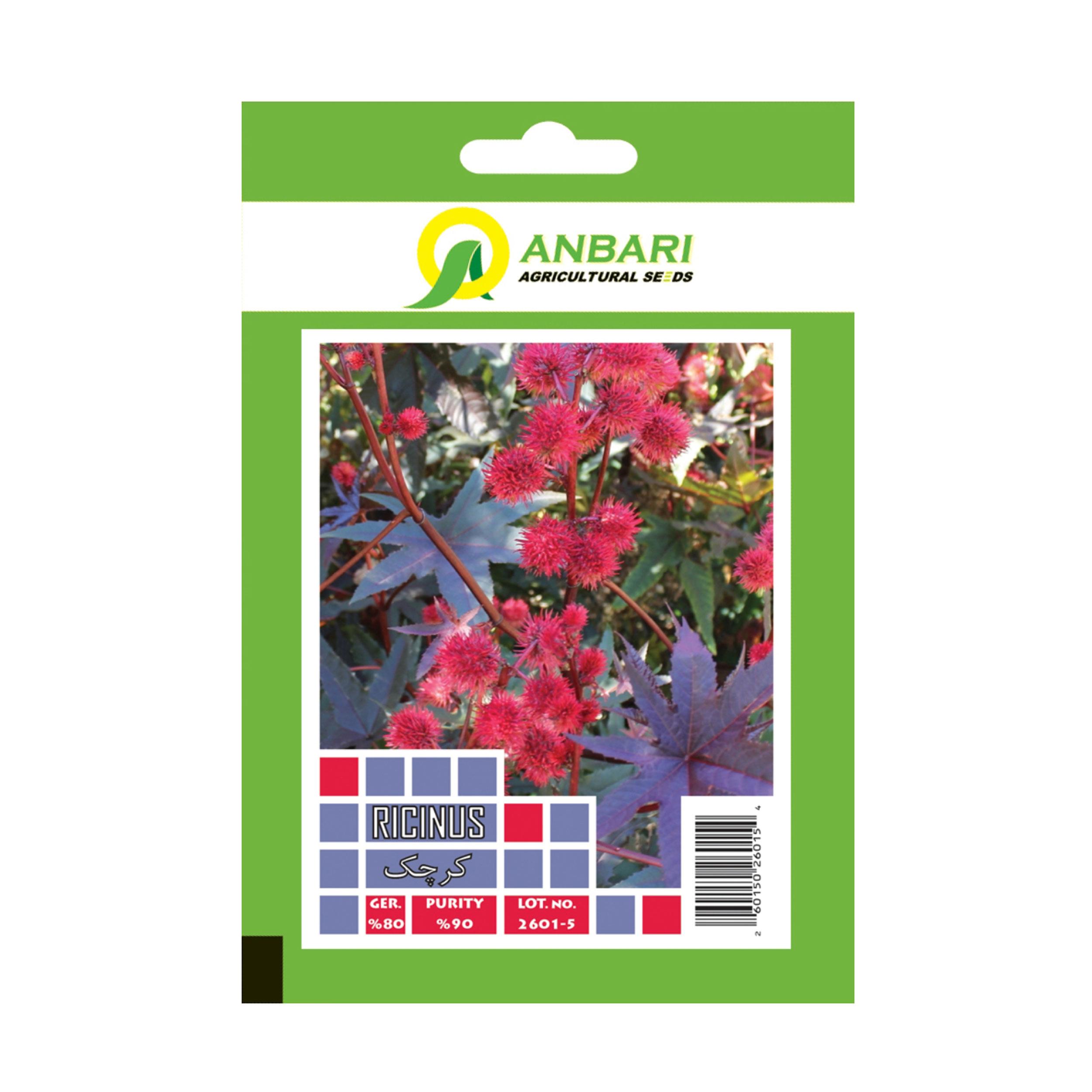 بذر گل کرچک بذر عنبری کد BZA-025