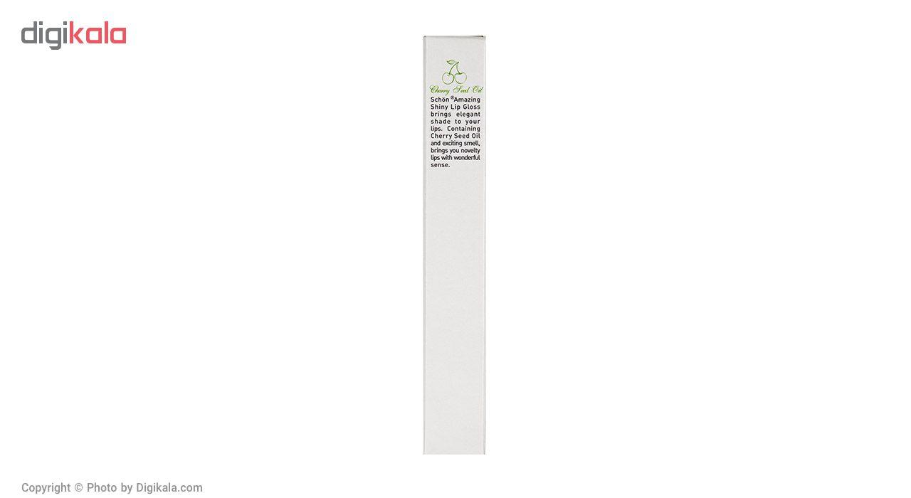 رژلب مایع شون سری Amazing Shiny شماره S61
