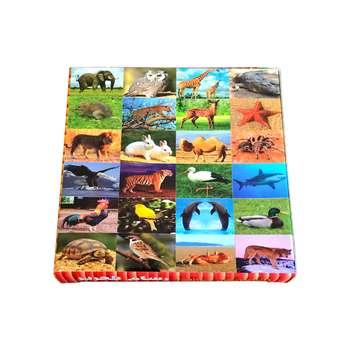بازی آموزشی رسام تحریر مدل کارت حیوانات کد AC24