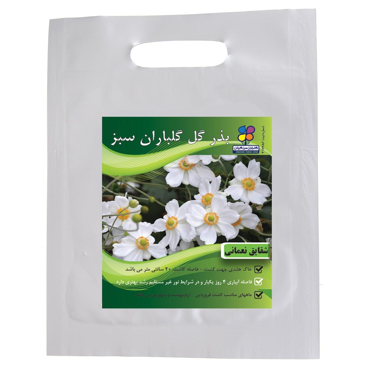 بذر گل شقایق نعمانی گلباران سبز