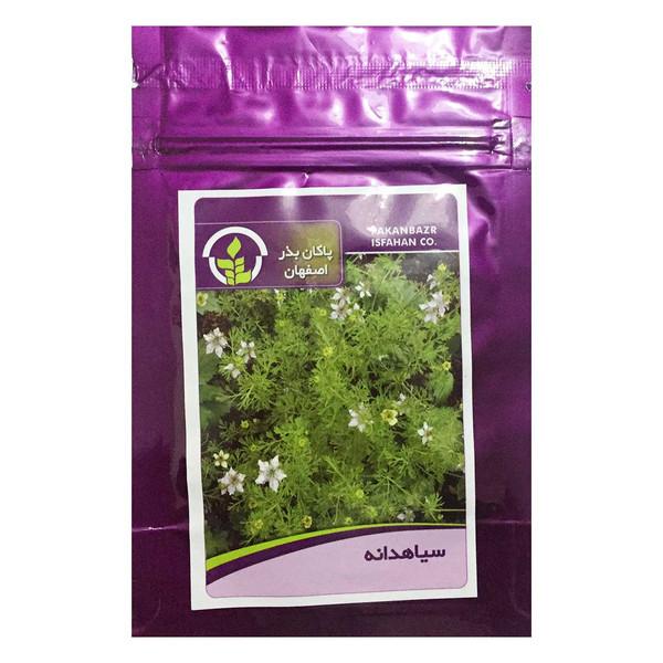 بذر سیاه دانه پاکان بذر اصفهان کد PBF-62