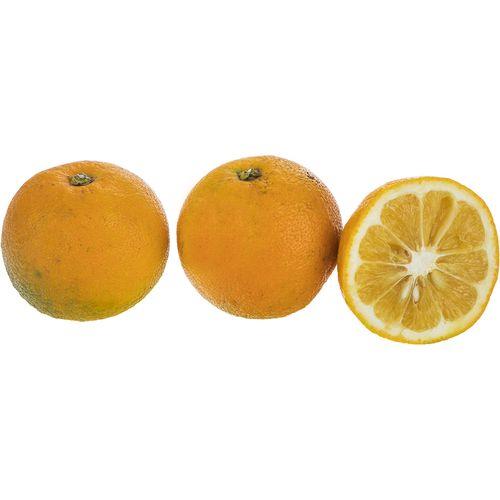 نارنج ارگانیک شمال مقدار 1000 گرم