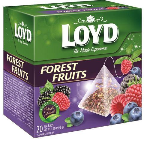 دمنوش میوه های جنگلی لوید کدb 2 بسته 20 عددی