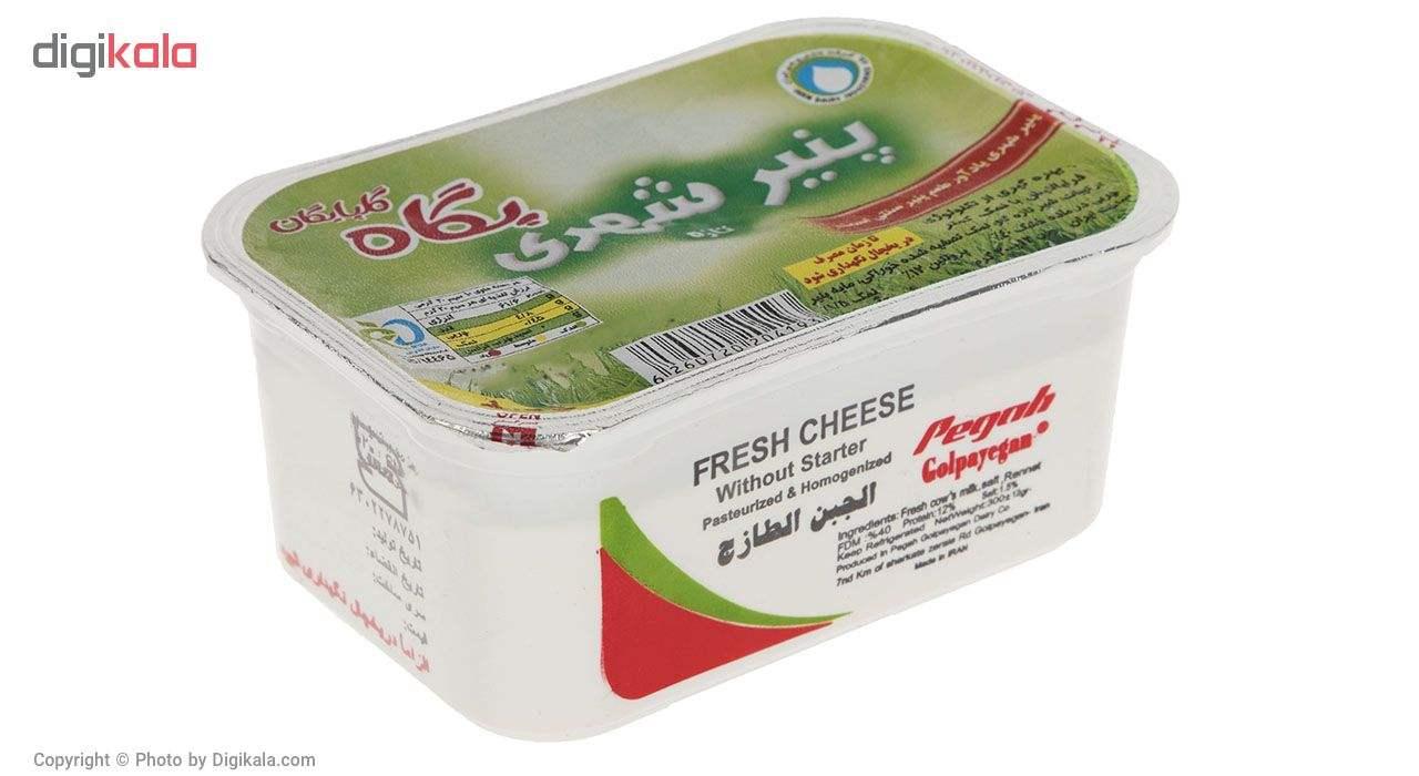 پنیر شهری پگاه مقدار 300 گرم main 1 1