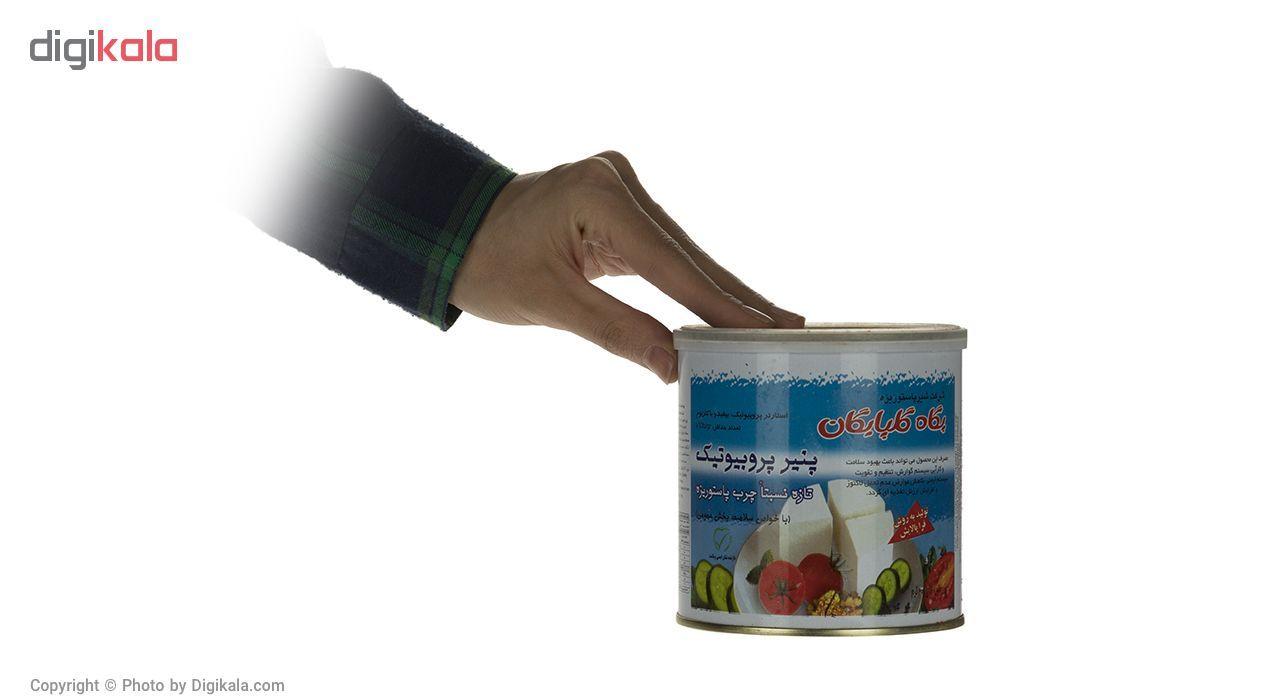 پنیر پروبیوتیک پگاه مقدار 400 گرم main 1 3