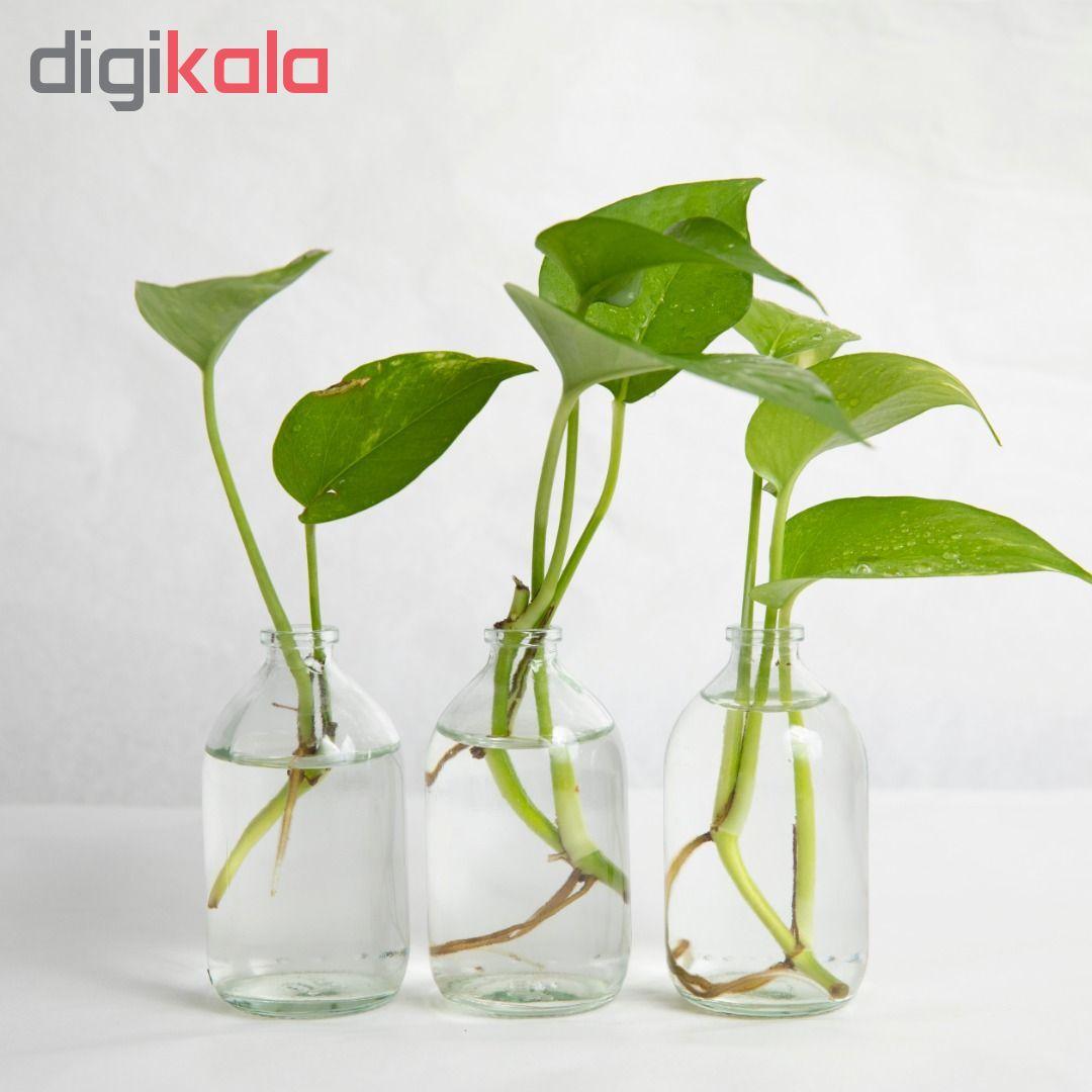 گلدان مدل ویال 1G1-2 بسته 3 عددی main 1 1