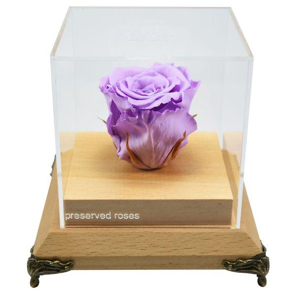 گل رز ماندگار کد ۰۱