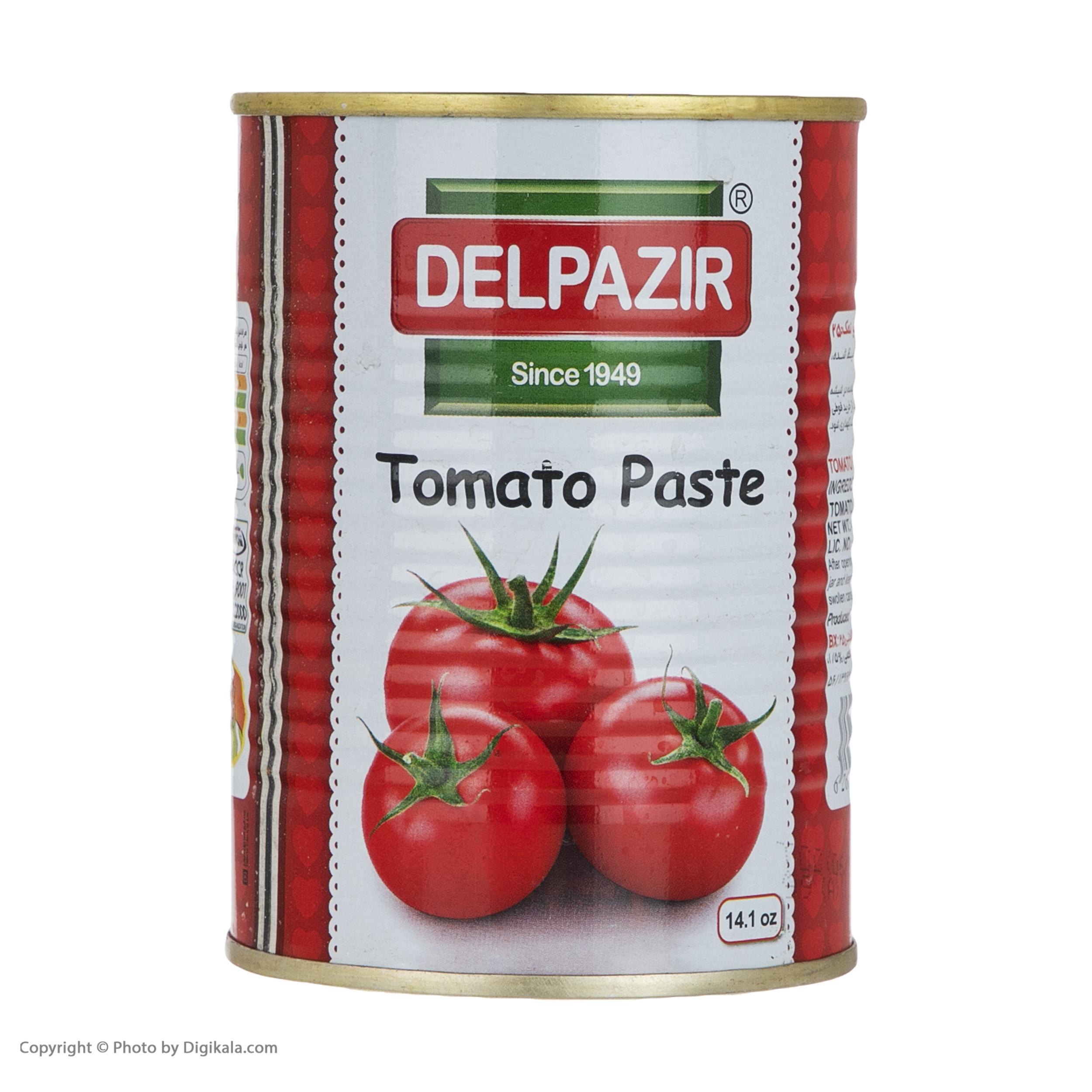 رب گوجه فرنگی دلپذیر - 400 گرم
