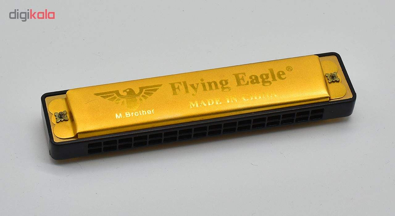 سازدهنی دیاتونیک مدل Flying Eagle 2