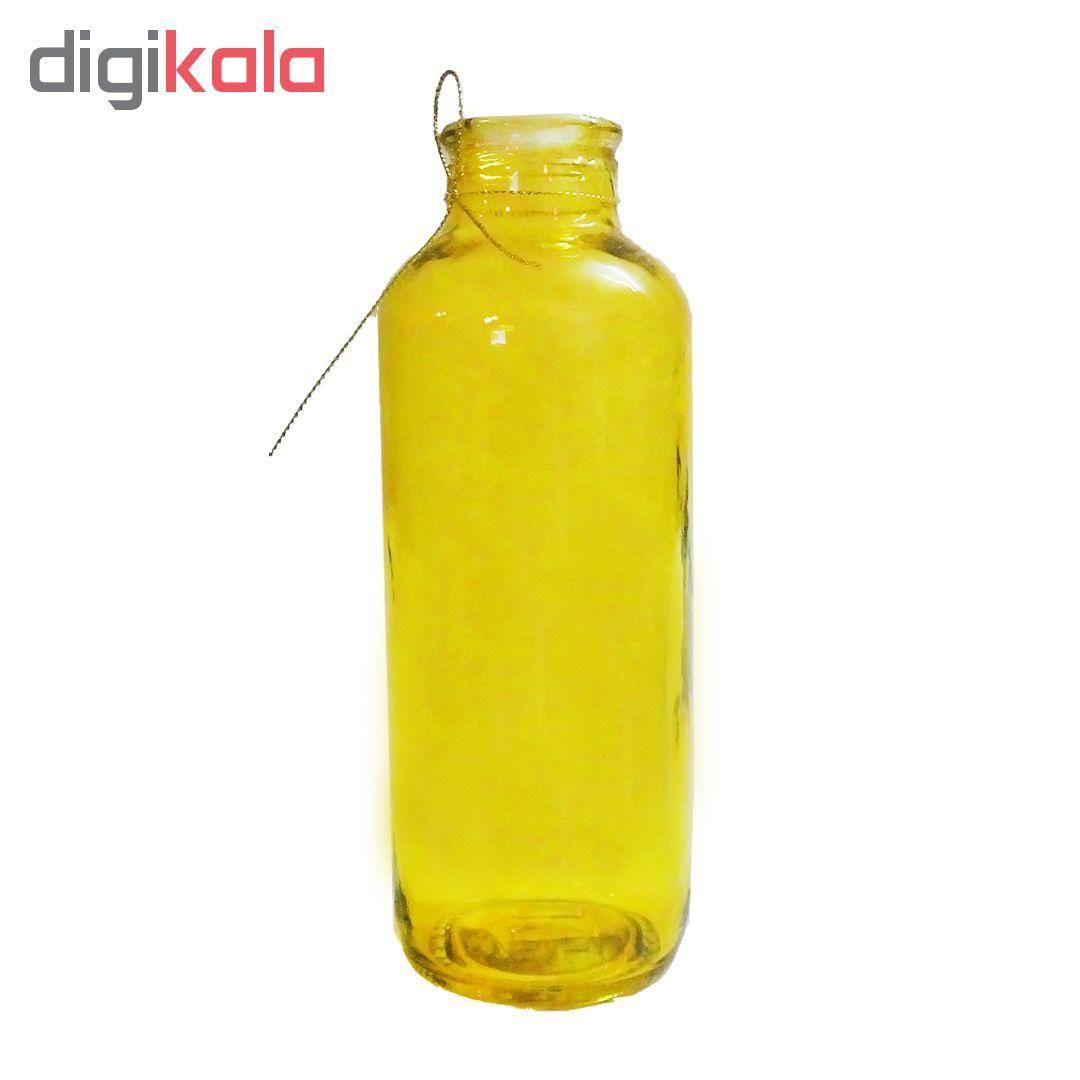 گلدان شیشه ای مدل 1G1-4 main 1 2