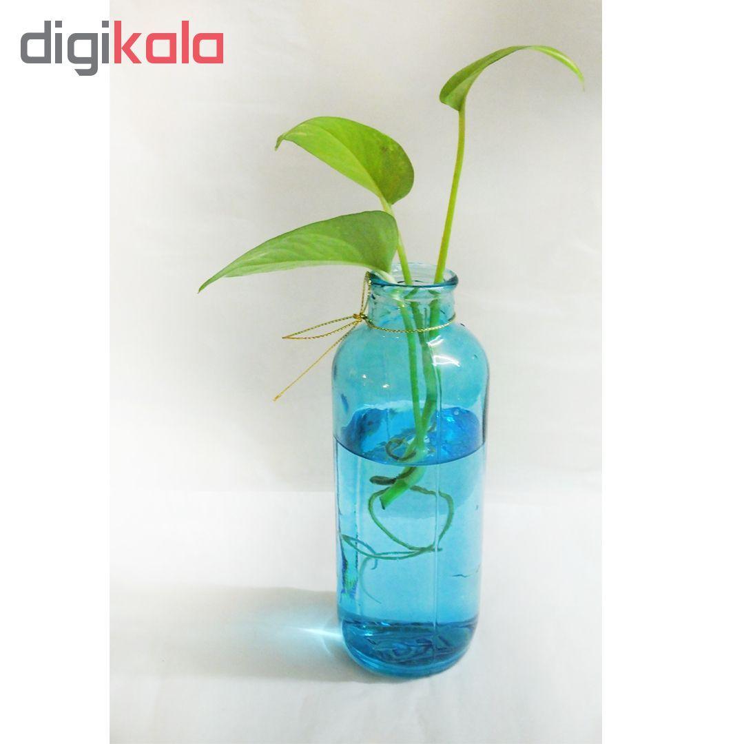 گلدان شیشه ای مدل 1G1-4 main 1 6
