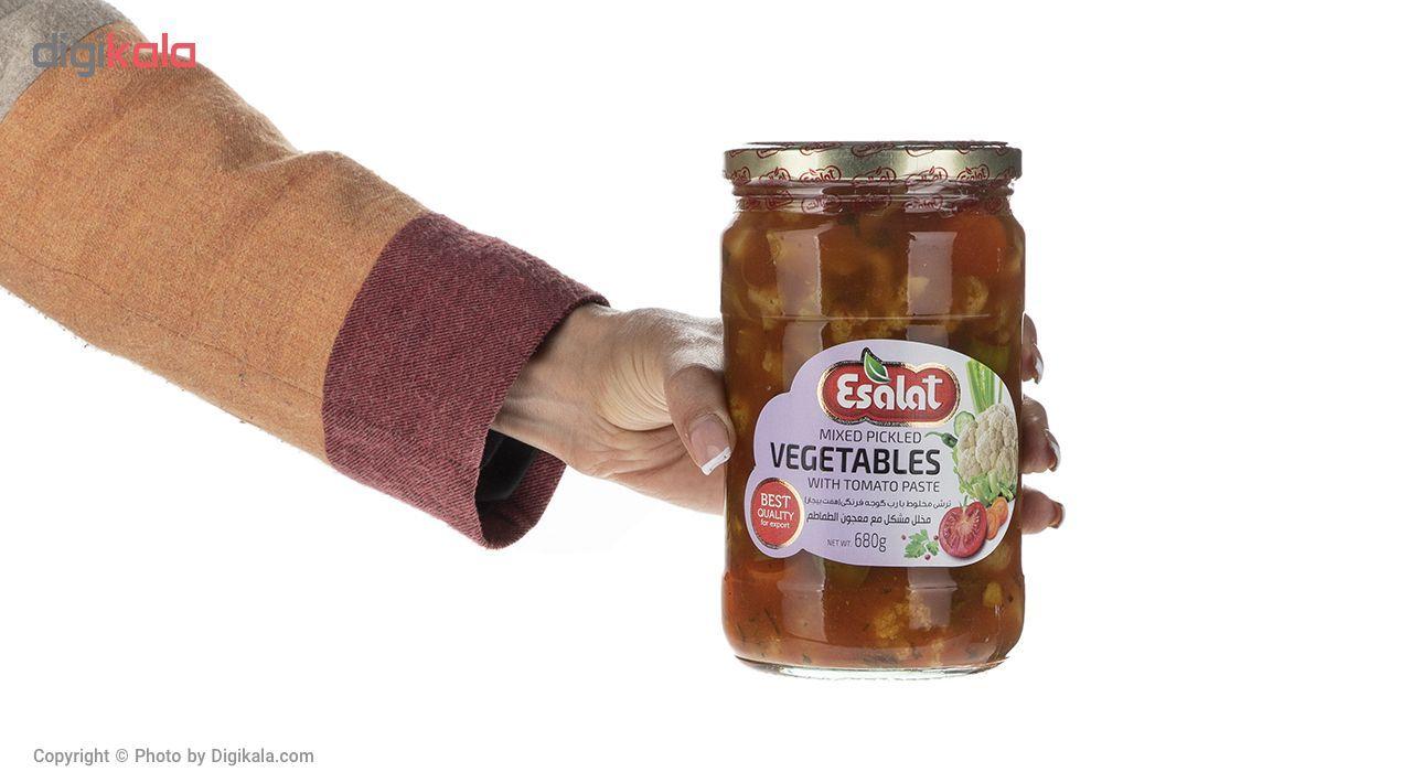 ترشی مخلوط  با رب گوجه فرنگی اصالت مقدار 680 گرم main 1 4