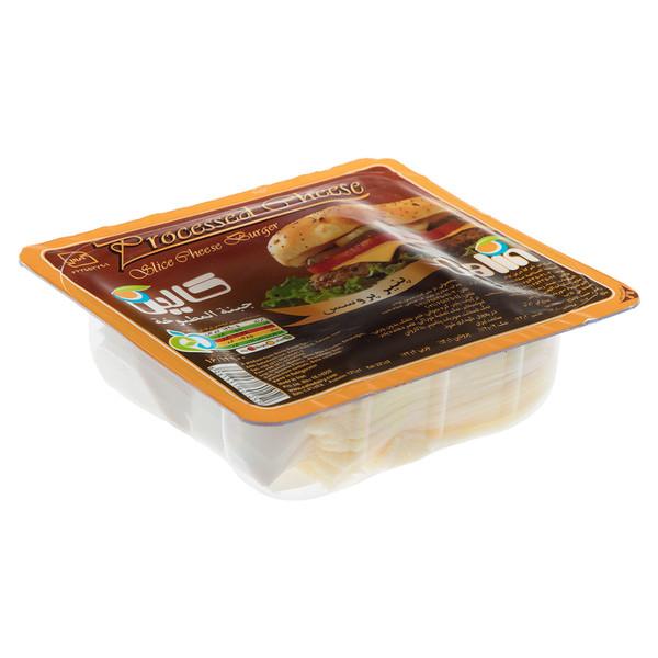 پنیر پروسس ورقه ای گودا کالین مقدار 180گرم
