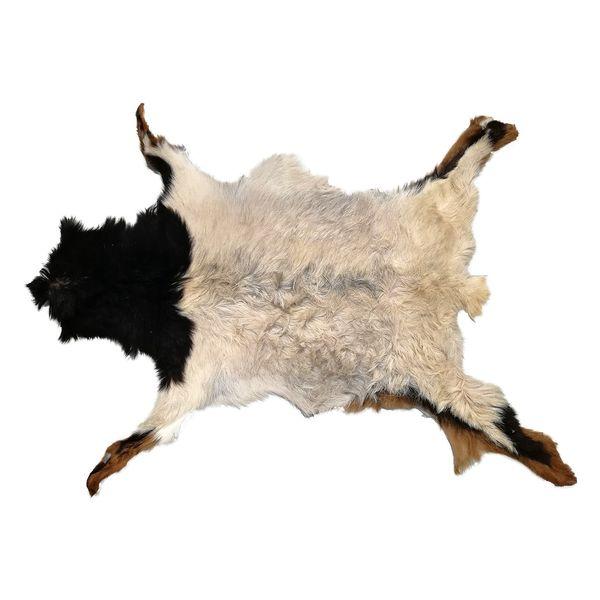 فرش پوست طبیعی کمالی مدل AC-00047