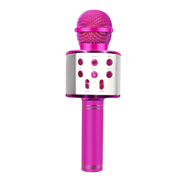 میکروفون اسپیکر مدل RESA WS-858