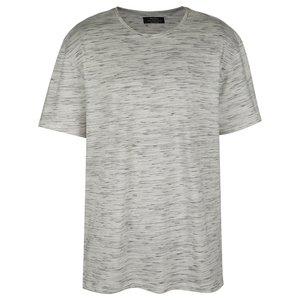 تی شرت مردانه برشکا مدل 250-443-2991