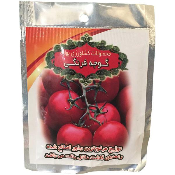 بذر گوجه فرنگی محصولات کشاورزی بهاره کد 296