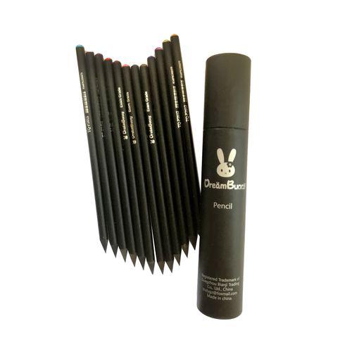 مداد رنگی دریم بانی مدل 123 بسته 12 عددی