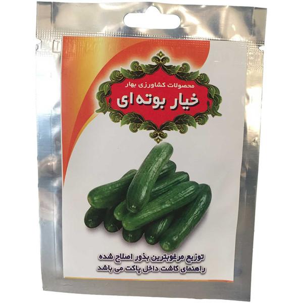 بذر خیار بوته ای محصولات کشاورزی بهاره کد 300