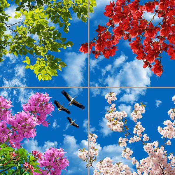 تایل سقفی آسمان مجازی مدل AY22009 سایز 60*60 بسته چهار عددی