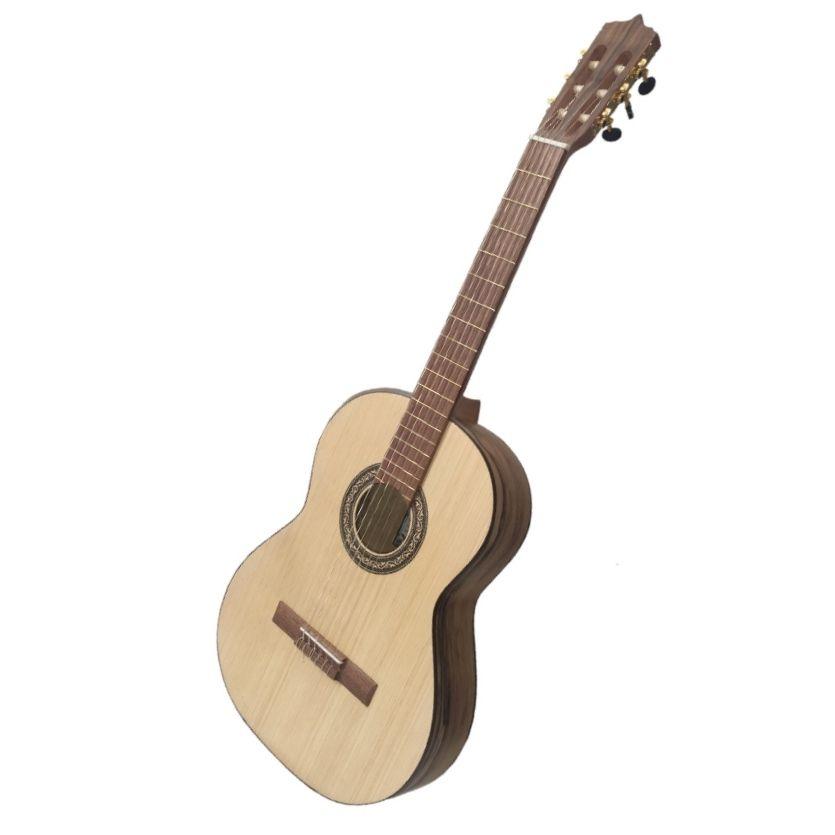 گیتار پارسی مدل p70