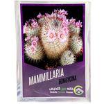 بذر کاکتوس مامیلاریا بامبیسینا خانه سبز گلدیس کد 15