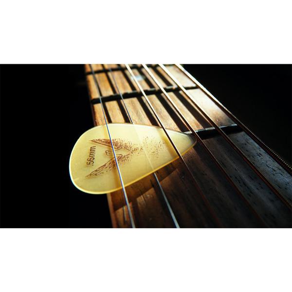 تابلو شاسی طرح گیتار و پیک کد 18