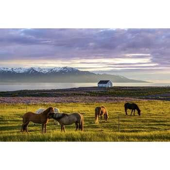 تابلو شاسی طرح زیباترین عکس های جهان- طبیعت آرامش بخش کد 70