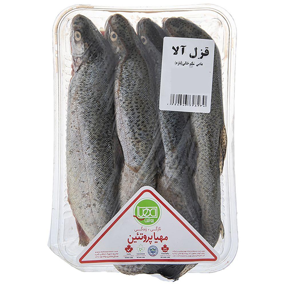 ماهی قزل آلا شکم خالی تازه مهیا پروتئین مقدار 1کیلوگرم