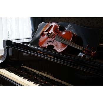 تابلو شاسی طرح زیباترین عکس های جهان-ویولن و پیانو کد 114