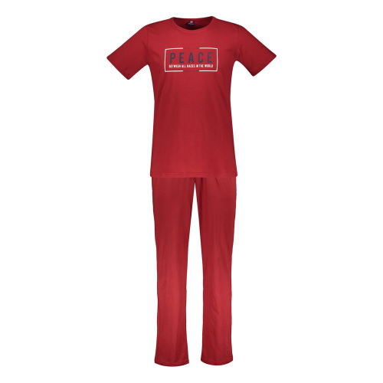 ست تی شرت و شلوار مردانه جامه پوش آرا مدل 4031016455-72