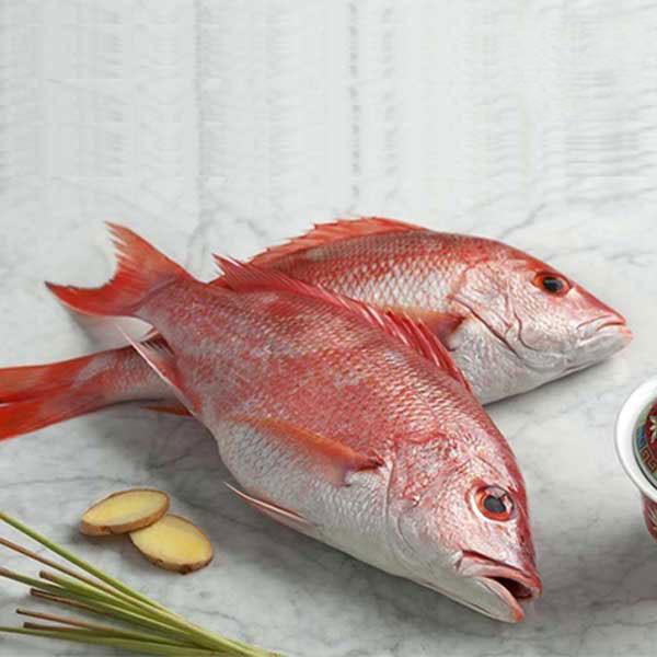 ماهی سرخو تازه جنوب - 2000 گرم