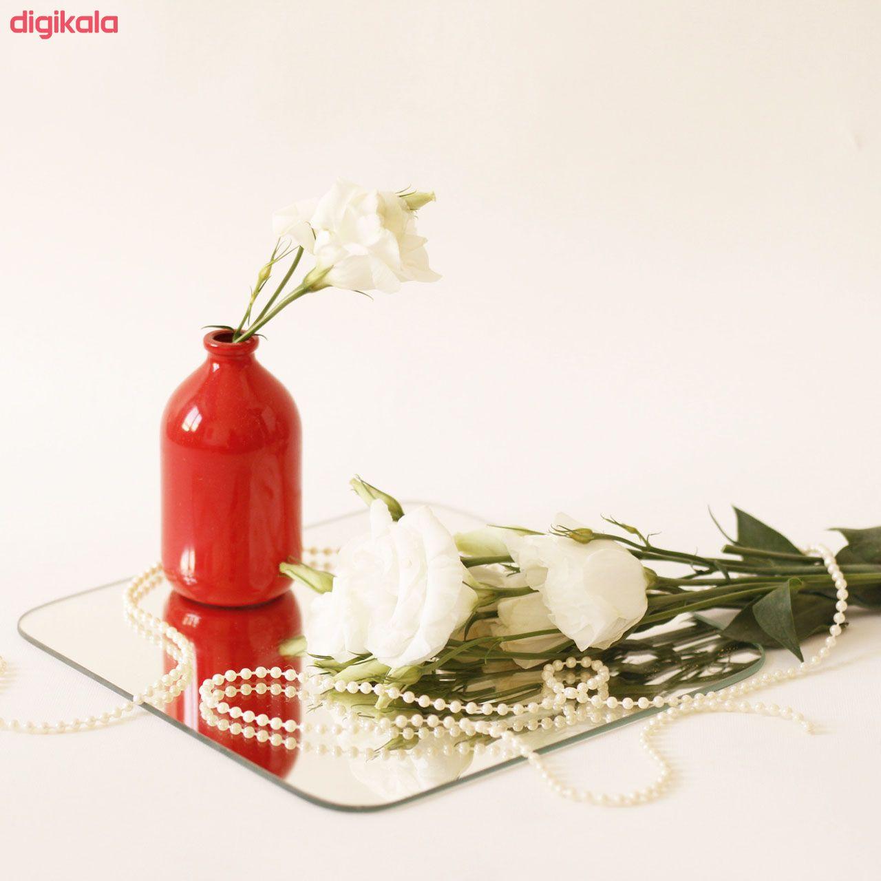 گلدان مدل N20 کد NG10 main 1 18