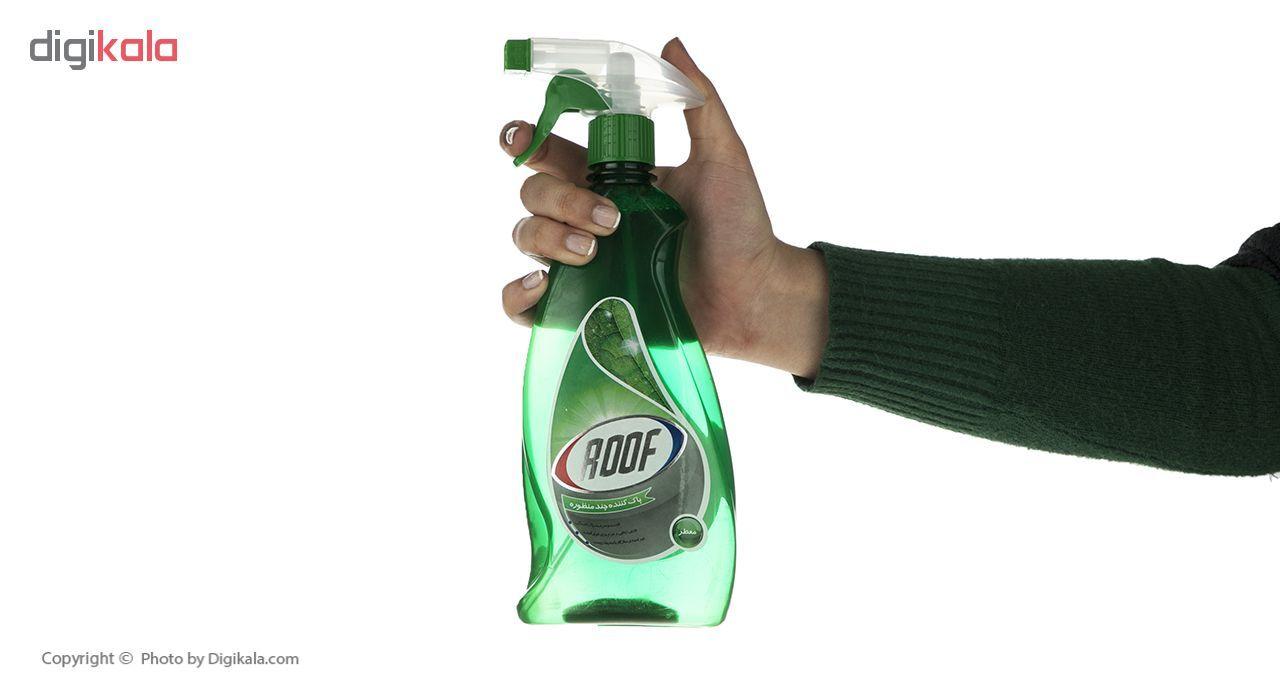 اسپری پاک کننده چند منظوره سطوح روف سری Green حجم 600 میلی لیتر main 1 3