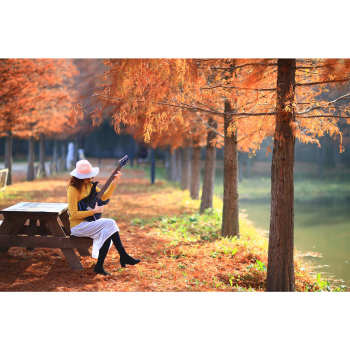 تابلو شاسی طرح حس خوب موسیقی و طبیعت زیبا کد 191