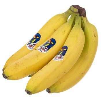 منتخب محصولات پربازدید میوه