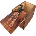 ابزار شوخی طرح جعبه حشرات مدل DSK.JH thumb