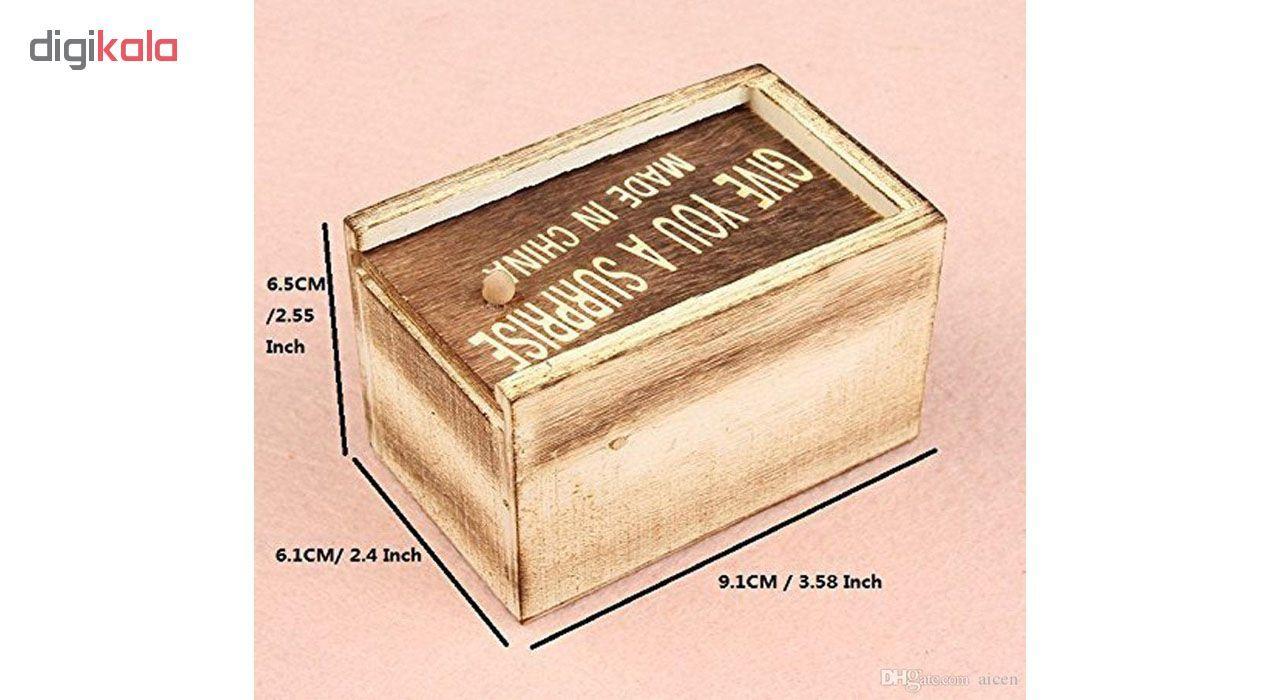 ابزار شوخی طرح جعبه حشرات مدل DSK.JH main 1 5