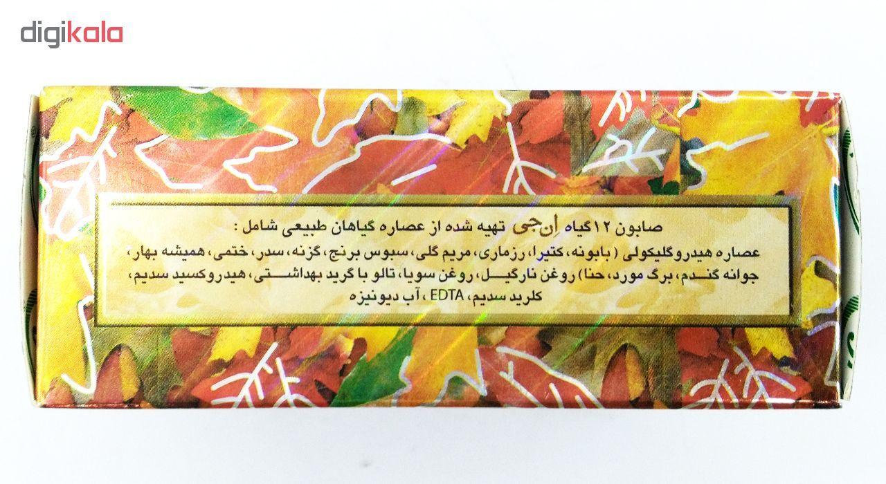 صابون 12 گیاه موی سر ان جی اورجینال مدل NG Herb وزن 100 گرم main 1 6