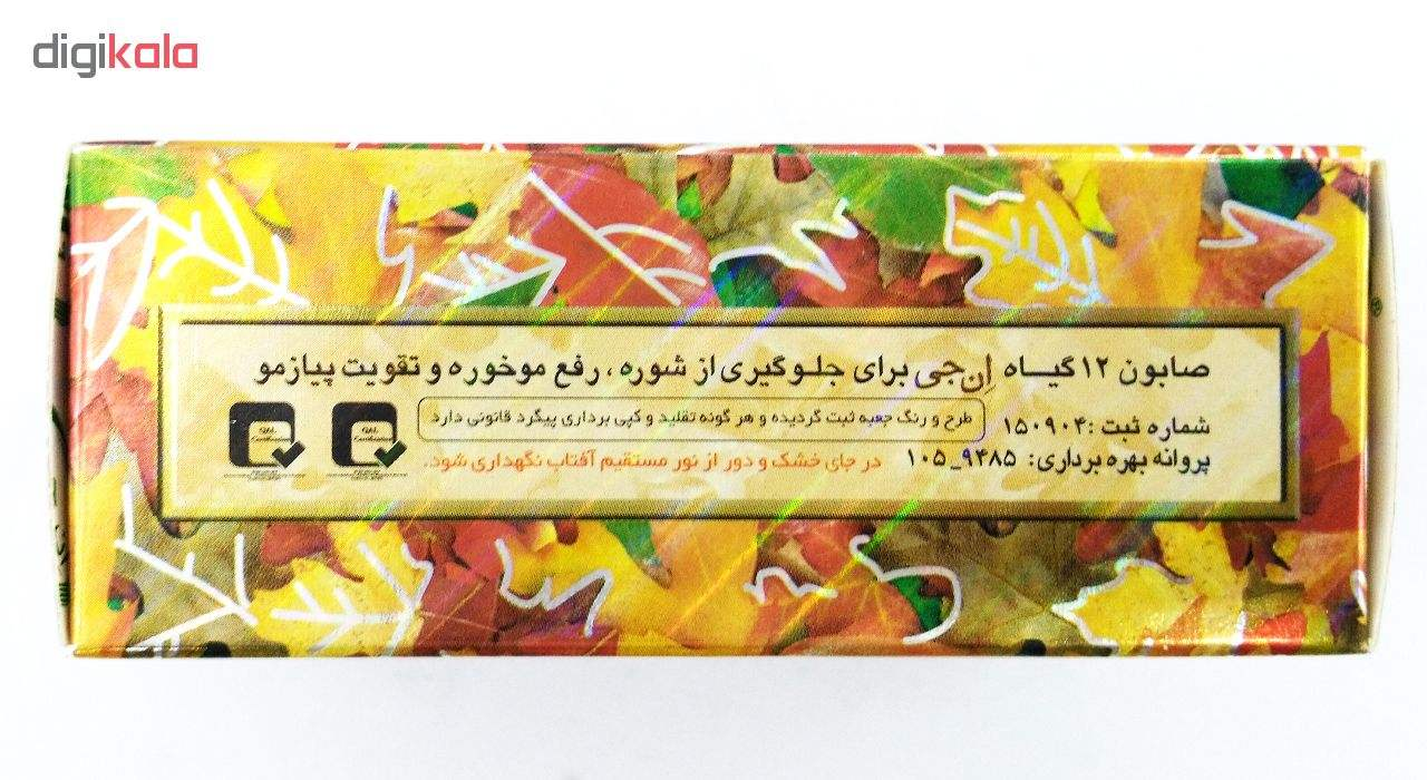 صابون 12 گیاه موی سر ان جی اورجینال مدل NG Herb وزن 100 گرم main 1 7