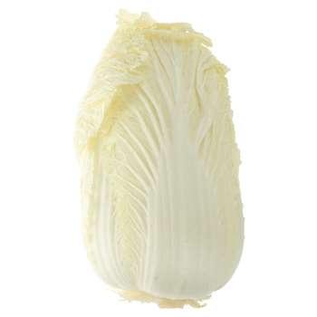 کاهو چینی بسته 1 عددی | Chinese Lettuce Pack Of 1