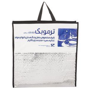 کیف عایق دار سرماگرم مدل Termobag سایز کوچک