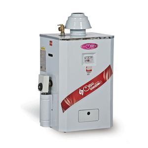 آبگرمکن گازی سوزان مدل LI-R60