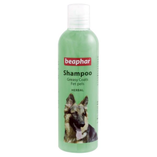 شامپو سگ بیفار مدل greasy coats حجم 250 میلی لیتر