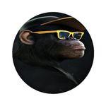 آینه جیبی مدل میمون کد 506