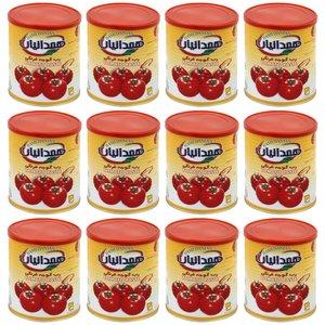 رب گوجه فرنگی همدانیان - 800 گرم بسته 12 عددی