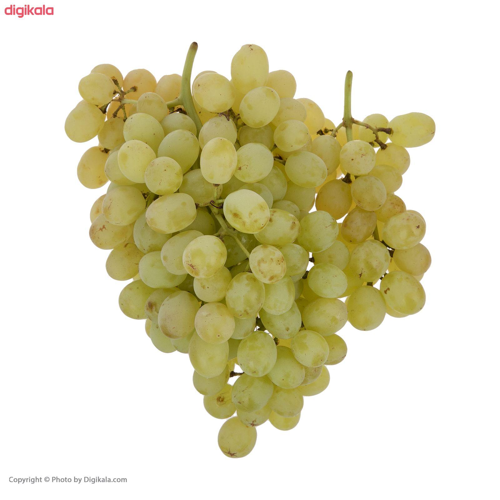 انگور بی دانه سفید بلوط - 500 گرم main 1 1